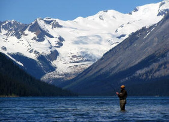 Fly Fish Alberta ~ Fly Fishing and Guided Fly Fishing