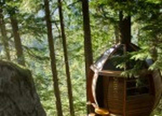 The HemLoft, A Secret Tree House in the Canadian Woods