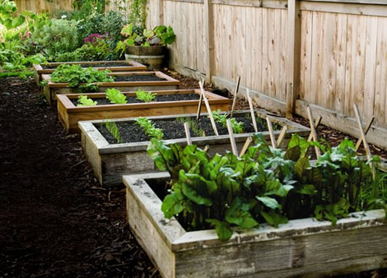 How to Build and Install a Raised Garden Bed - Popular Mechanics