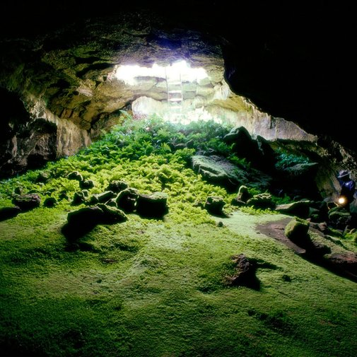 Just really cool looking.. a lava tube cave - PunchPin