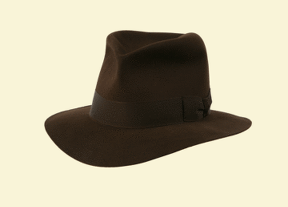 The Indiana Jones Hat