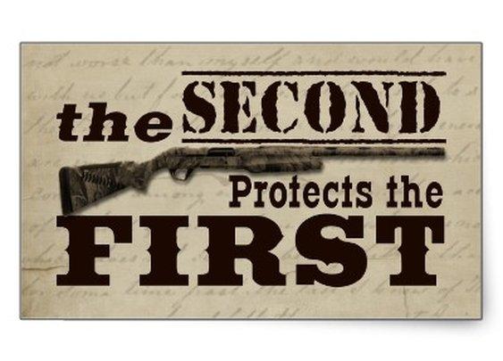 Protect second amendment
