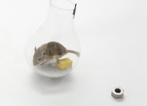 Dezeen » Blog Archive  » Non-lethal mousetraps by Roger Arquer