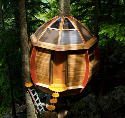 Manly treehouse