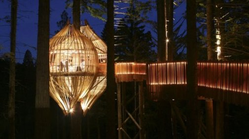 Redwoods Treehouse offers a unique treetop dining experience