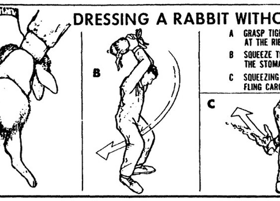 Dress a rabbit without a knife