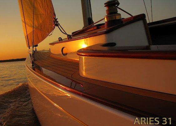 New Aries 31