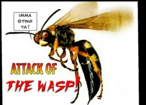 Wasps, I will literally kill you with fire. « Casual Disagreement