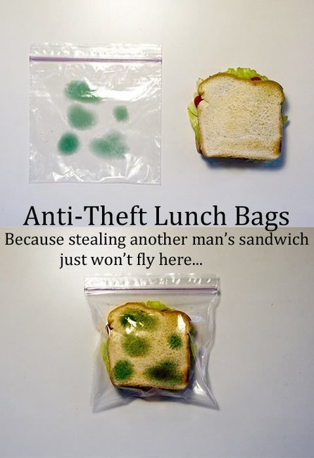 Anti-theft lunch bags - BRILLIANT!