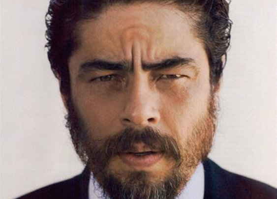 Benecio Del Toro portrait.