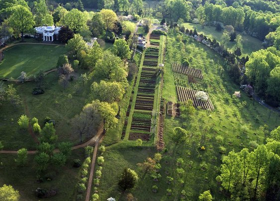 Thomas Jefferson's Vegetable Garden: A Thing Of Beauty And Science : The Salt : NPR