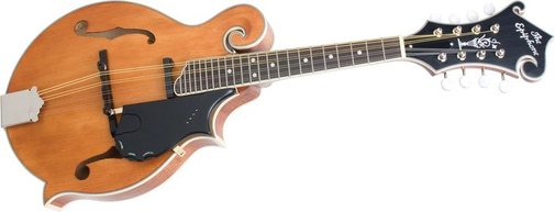Epiphone MM-50E Professional Electric Mandolin | Musician's Friend