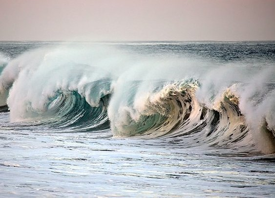 um. surf's...up.