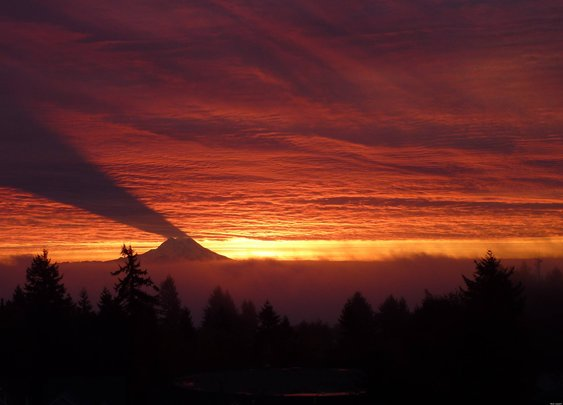 Mount Rainier Shadow - Reddit