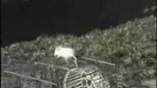 Hawk steals kid's mouse      - YouTube