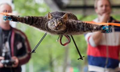 Orvillecopter is a flying dead cat » Coolest Gadgets