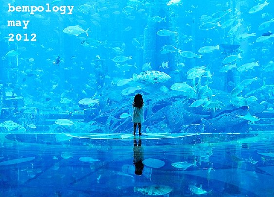 Bempology  » Archive   » Bempology May 2012