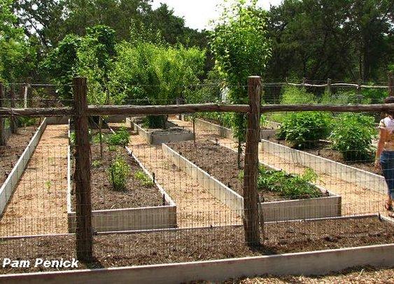 garden fence.