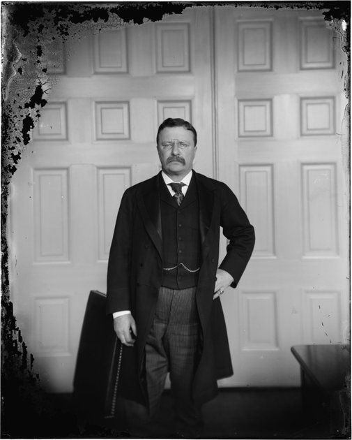 Wet plate (Collodion) photo of President Theodore Roosevelt, circa 1890 - 1910