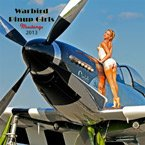 WWII Fighter Planes & Bombers with Beautiful Pin Up Girls