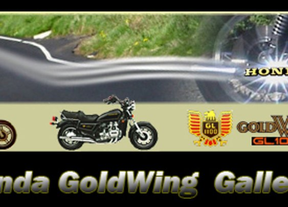 Naked GoldWings | A tribute to Honda GoldWing