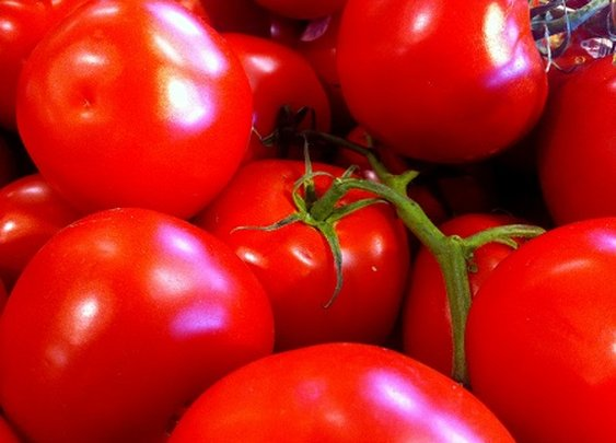 Crop Organic Tomato Vodka