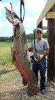Gar-gantuan feat at Lake Corpus Christi   » Corpus Christi Caller-Times