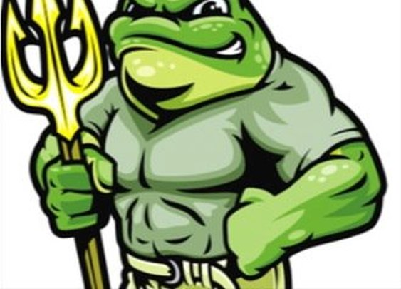 Frog Performance