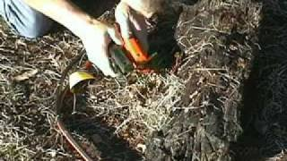Jumper Cable Campfire      - YouTube