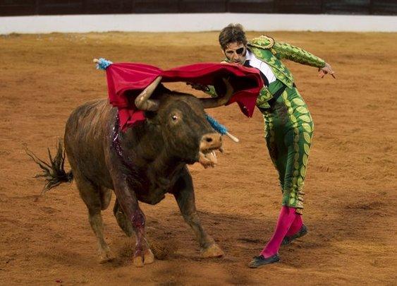 Gored Bullfighter returns to the ring