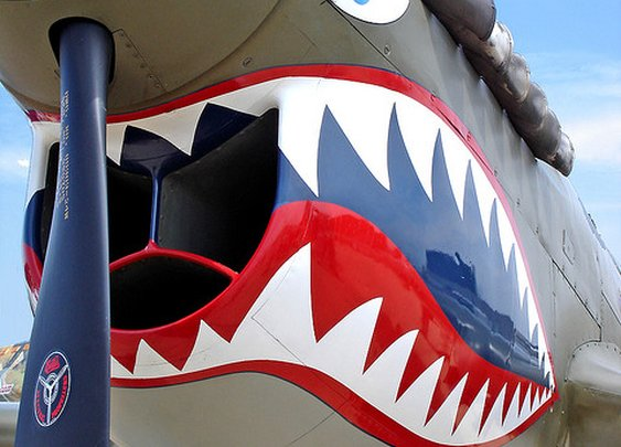 P40 Warhawk | Flickr