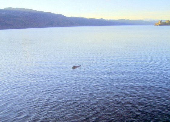 Skipper claims to have finally found proof that Loch Ness Monster exists  | Mail Online