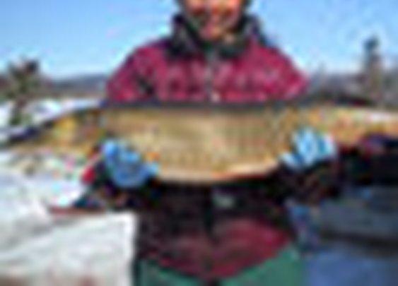 Nice Catch: Salmon 2012: Nice Catch | Alaska news at adn.com
