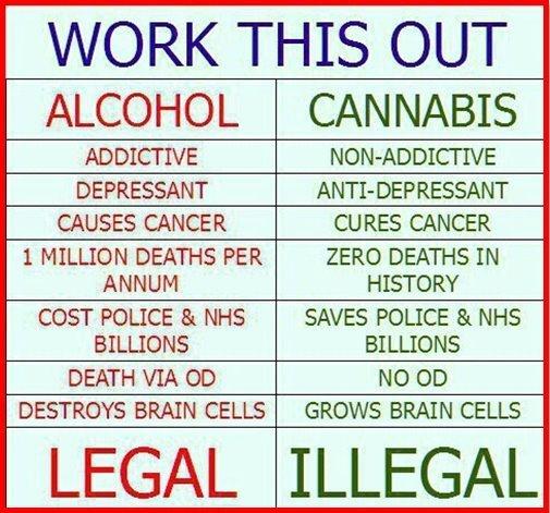 Alcohol v Cannabis