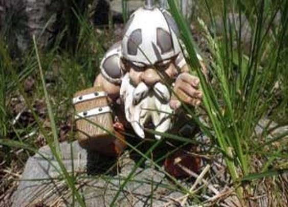 Battle Gnome