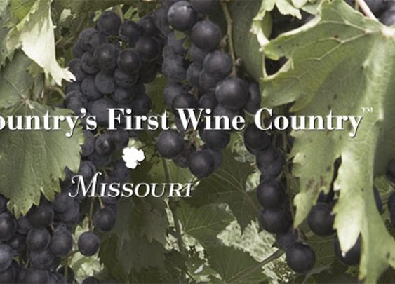 Missouri Wine | Welcome