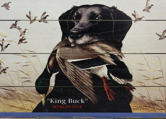 "Vintage Winchester Sign-""King Buck""  