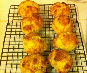 The Plainsman's Kitchen: Cheese Biscuits - College and Magnolia