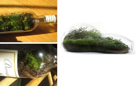 Greenscaping in a Bottle
