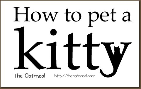 How to pet a kitty