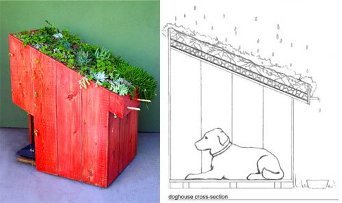Sustainable Dog House