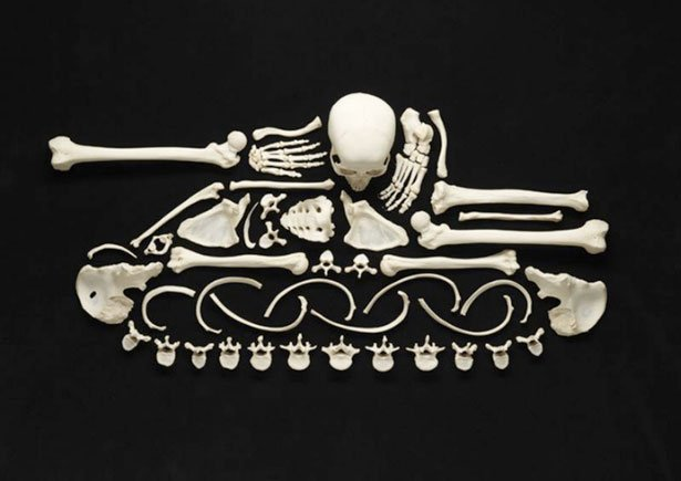 The Creepy Art of Human Bones
