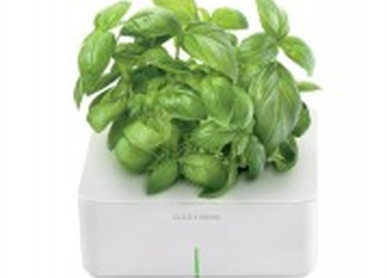 Smartpots - Click and Grow