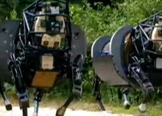 BBC News - The robot dogs that can carry 400lb