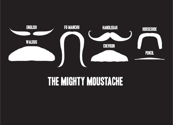 Moustache recognition guide: Do we really need one?