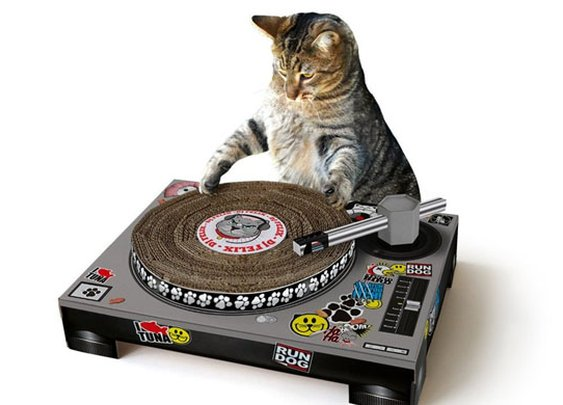 DJ Kitty Scratching Post
