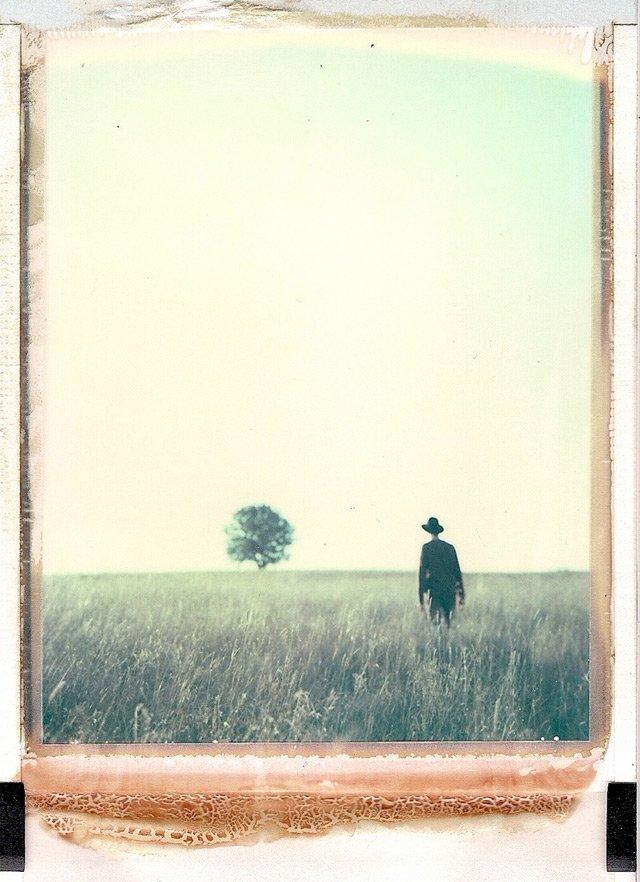The Mysterious Polaroids of Bastian Kalous | Colossal
