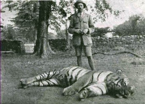 Leopards and Tigers and Corbetts «  Now I Know Archives