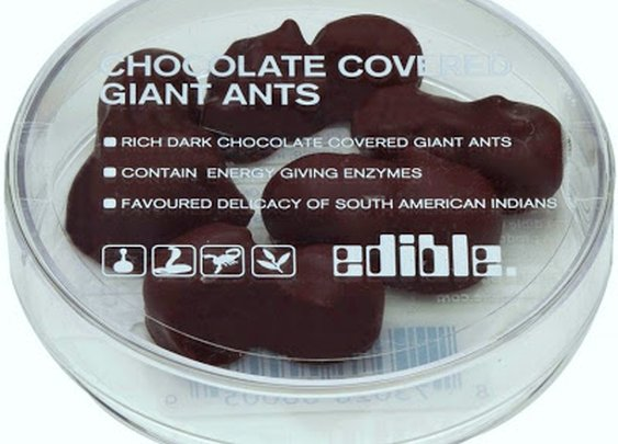 "Oct. 14 - National ""Eat a Chocolate Covered Insect"" Day"