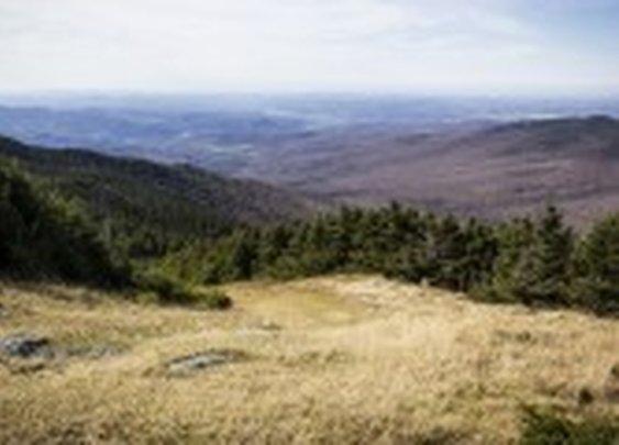 Trail Map   Jay Peak Resort